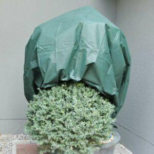 Wintervlies grün Winterschutz